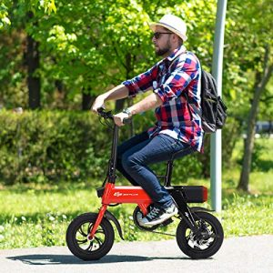 goplus cheap folding ebike